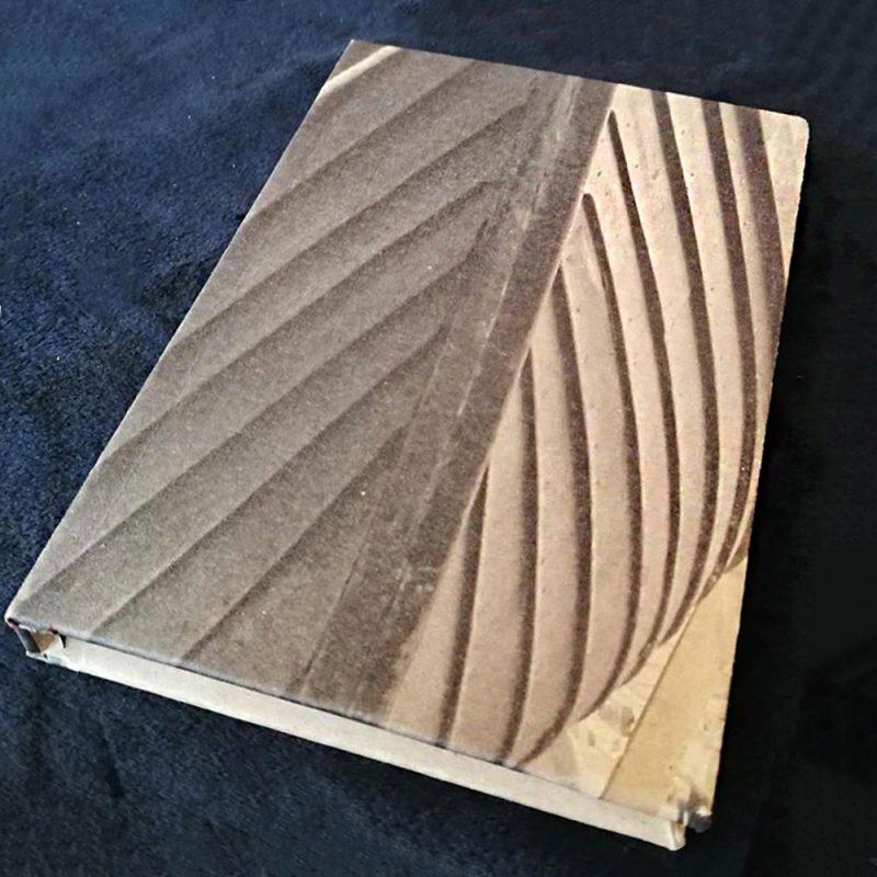 Sae Wylfing notebook